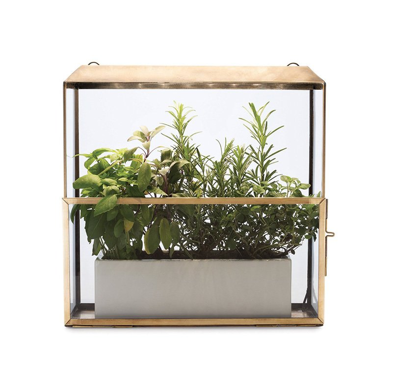 Photo 1 of 1 in Modern Sprout Brass Grow-Anywhere Growhouse