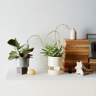 Light + Ladder Archromo Planter
