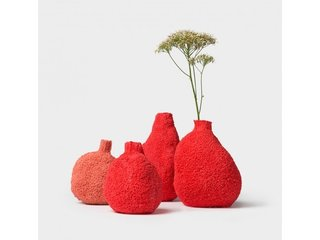 Michal Fargo Coral Vases