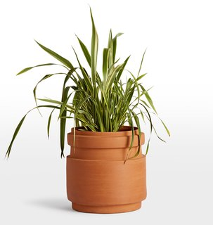 Rejuvenation Brice Extra Large Planter