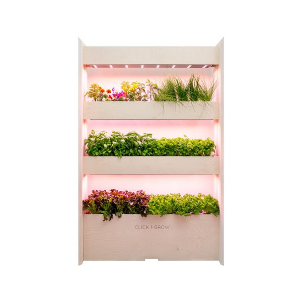 Click & Grow Wall Farm