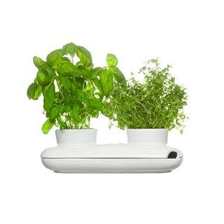 Sagaform Stoneware Duo Herb Pot