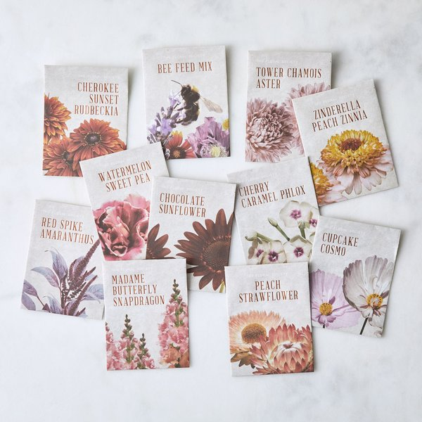 The Floral Society Flower Arranging Seed Starter Set