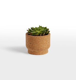 Melanie Abrantes Modern Cork Planter