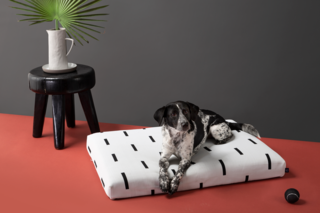 Laylo White Rain Pet Bed