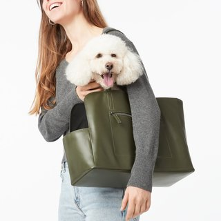 Fable Pets Carrier