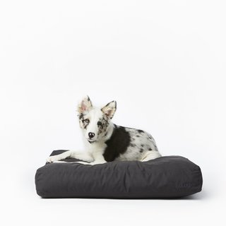 Fable Pets Bed