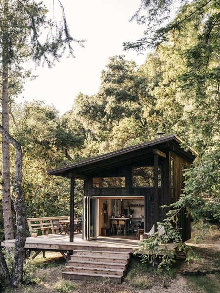 This DIY Couple Craft a Tiny Cabin in the Santa Cruz Mountains For Less Than $35K