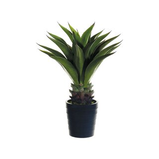 ALLSTATE Agave Attenuata Planter Decoration