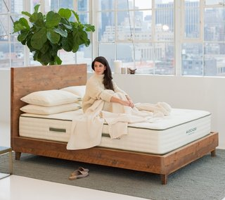 Avocado Natural Wood Bed Frame