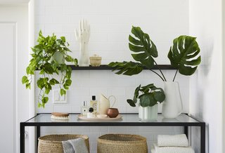 Don't Have a Green Thumb? The Sill's New Line of Hyper-Realistic Faux Plants Is Just for You