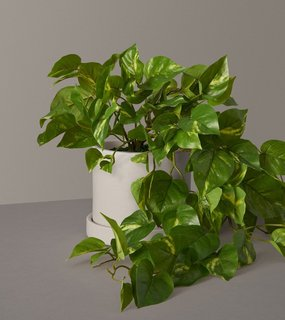 The Sill Faux Pothos Plant