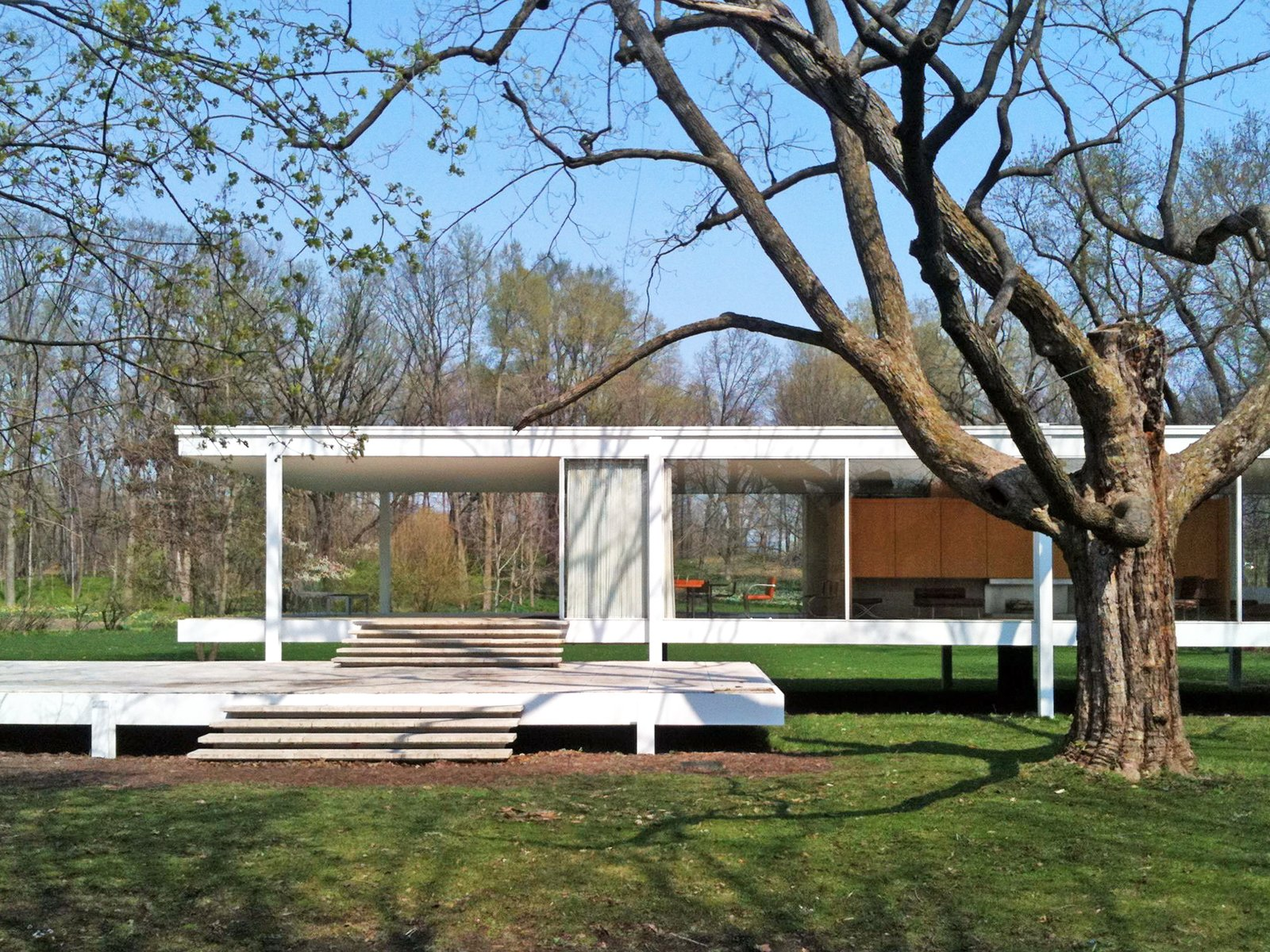 A Tree From the Farnsworth House Is Being Spun Into Historic Housewares