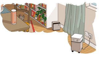 Breathe Easy With These Tried-and-True Solutions for Indoor Air Pollution