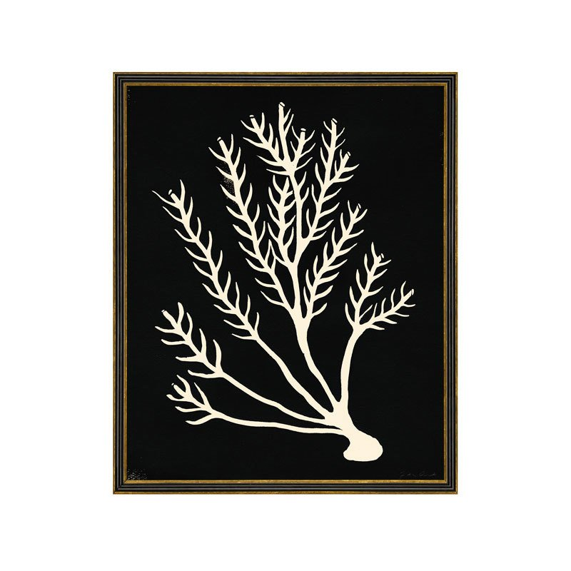 Underwater Plantlife 10 by Jennifer Ament Print