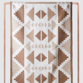 The Citizenry Tejal Desert Area Rug