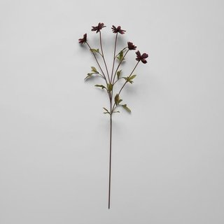 Bloomist EcoFaux Chocolate Cosmos Stem