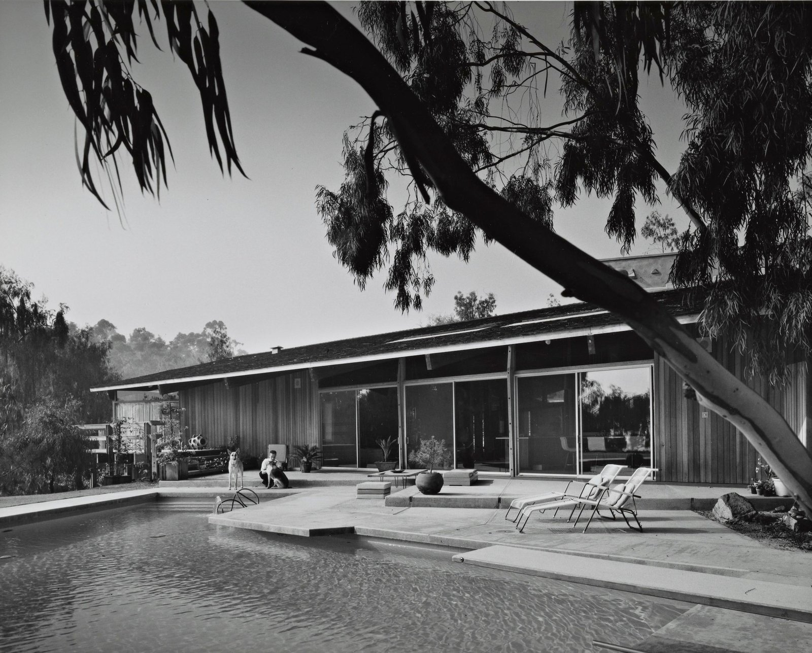 Outdoor  Photo 12 of 16 in A One-of-a-Kind Midcentury Modern Has Resurfaced on the Market to the Tune of $3.5M