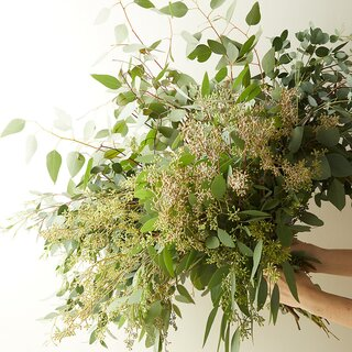 Terrain Fresh Assorted Eucalyptus Bunch