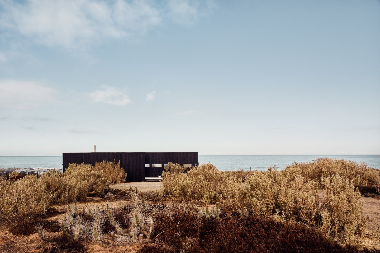 Outdoor, Shrubs, and Desert  Photo 10 of 10 in A Streamlined Home in Chile Straddles the Line Between Desert and Ocean