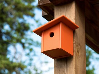 Loll Designs Pitch Birdhouse