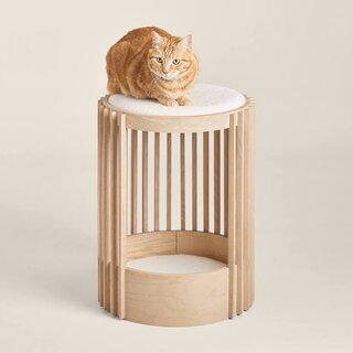 Tuft + Paw Grove Cat Tower