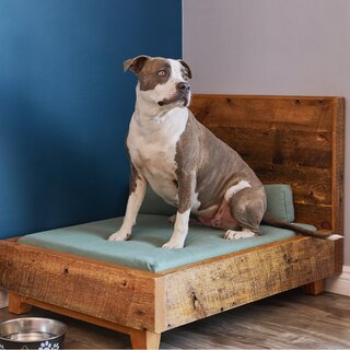 Avocado Dog Bed Frame