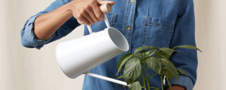17 Chic Watering Cans to Help Make Sure Your Plants Are Never Parched Again