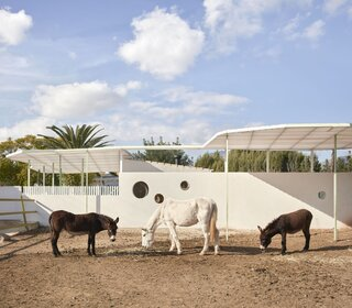 Playful, Horseshoe-Shaped Holes Punch Through the Walls of  Converted Stables