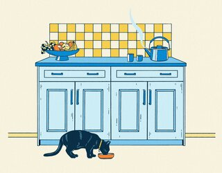 How to Replace Your Kitchen Cabinets