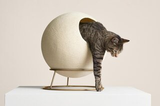 10 Modern Cat Beds That Won't Clash With Your Decor