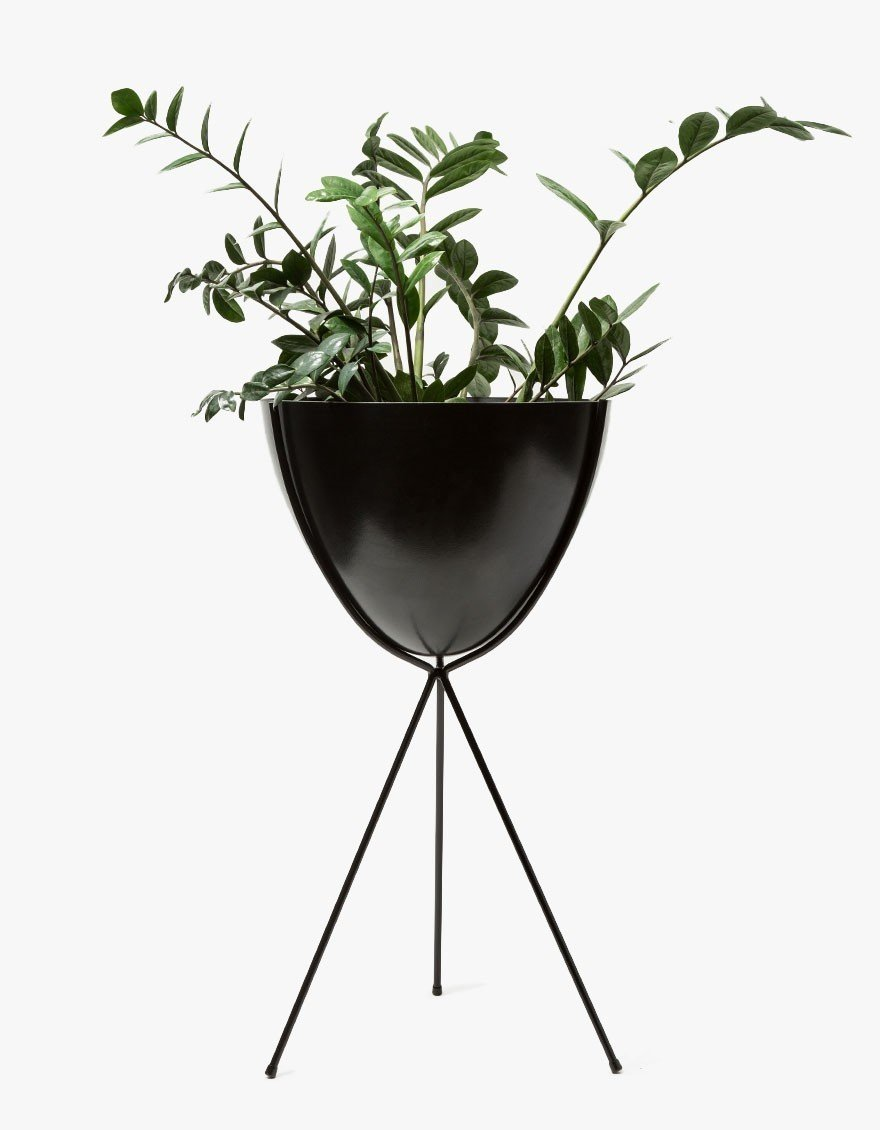 Photo 1 of 1 in Hip Haven Tall Black Stand – Black Bowl