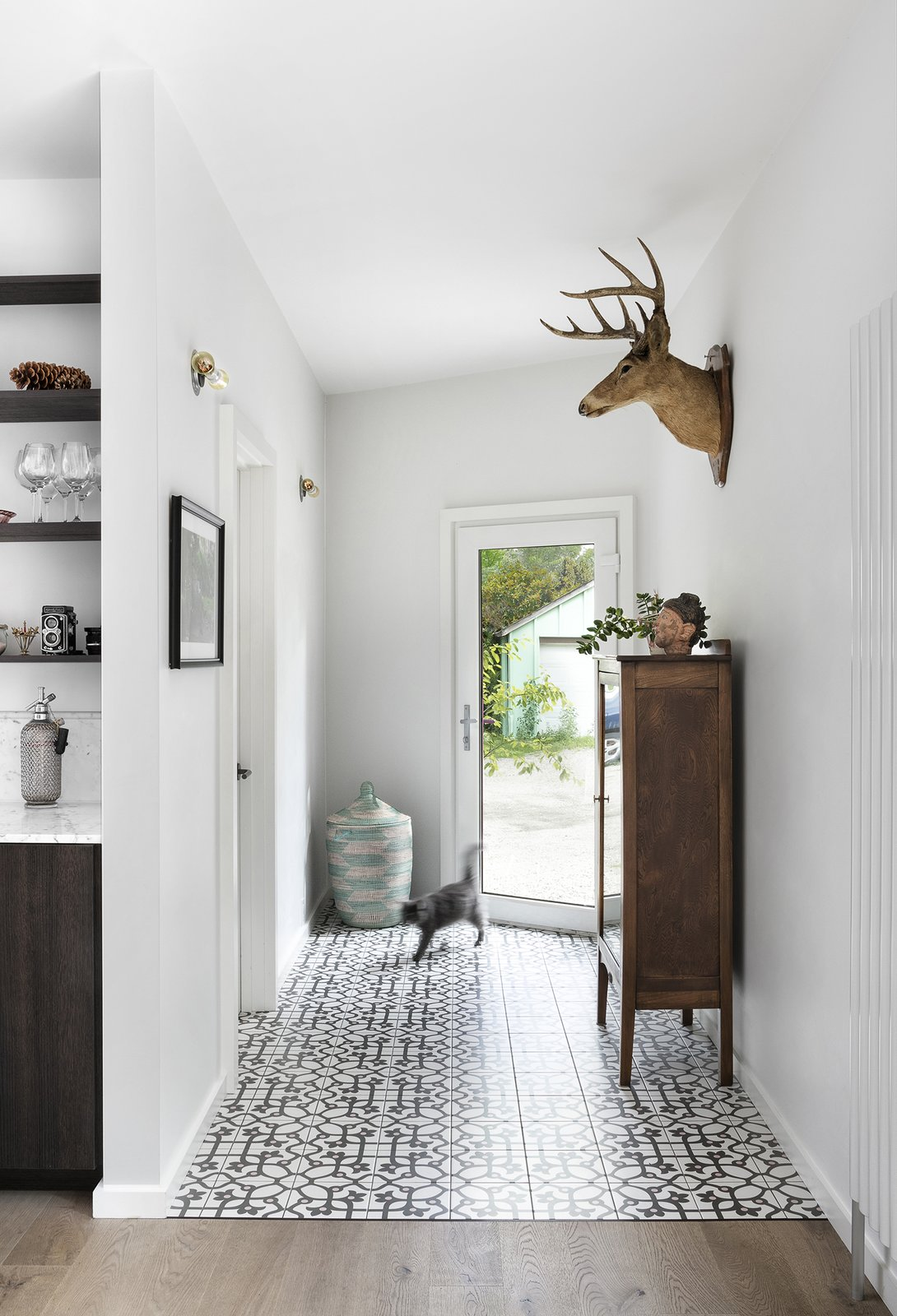 Hallway and Medium Hardwood Floor Jujol Basalto porcelain tiles, sourced from Mettro Source, line the floor just inside the front entry.  Photo 12 of 21 in 21 Cats Living in the Modern World from Quirky Toronto House Is Far From Color Shy