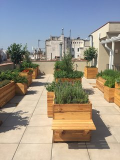 The newly opened rooftop terrace features a fragrant garden that was created by Alejandra Coll. The ingredients grown here will be used at the restaurants and bars in the hotel.