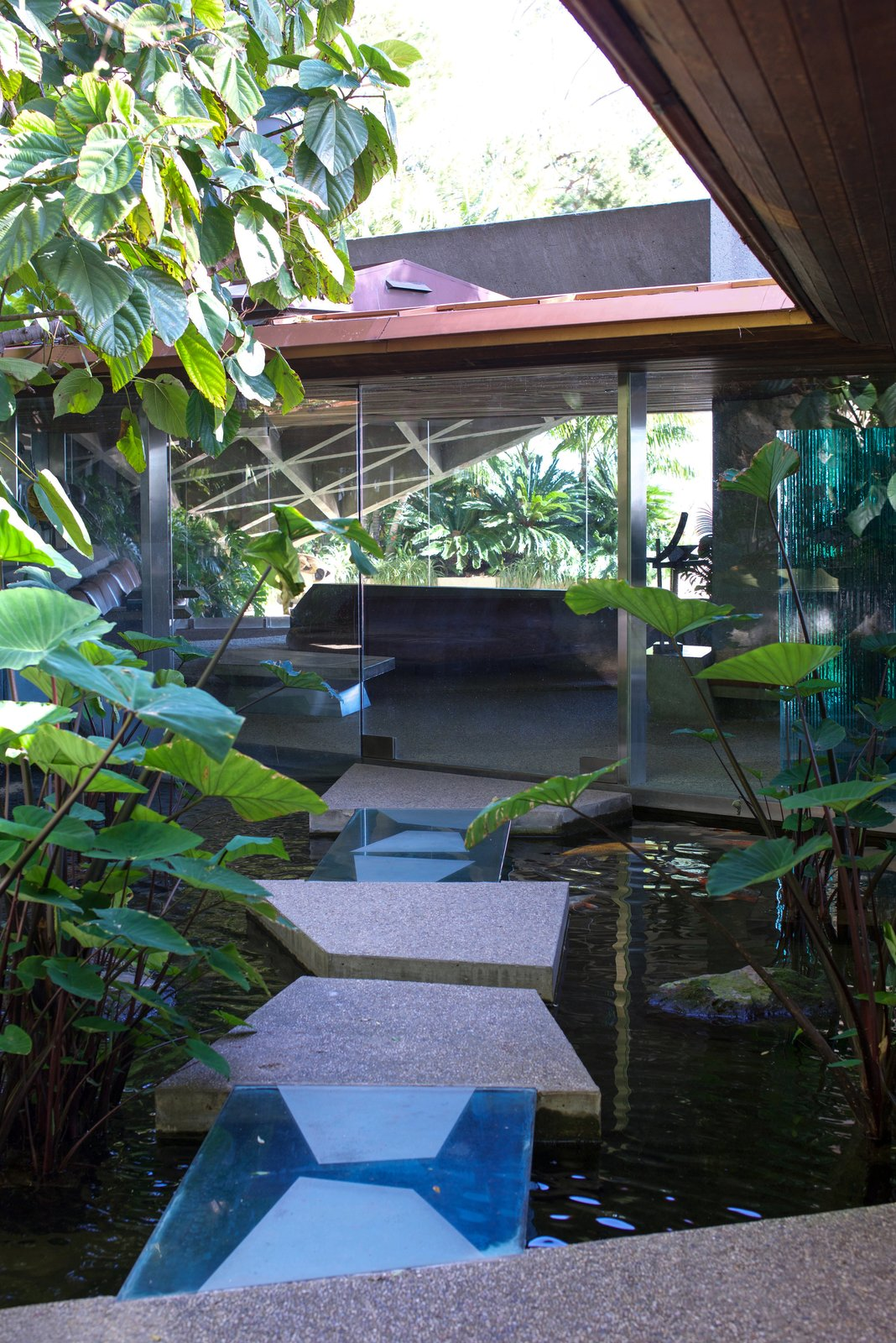 When Goldstein bought the house, the only vegetation was one lonely tree. He made himself a goal to create his own tropical jungle, which now extends over four acres of the property.  Photo 3 of 9 in Iconic Perspectives: John Lautner's Sheats-Goldstein Residence