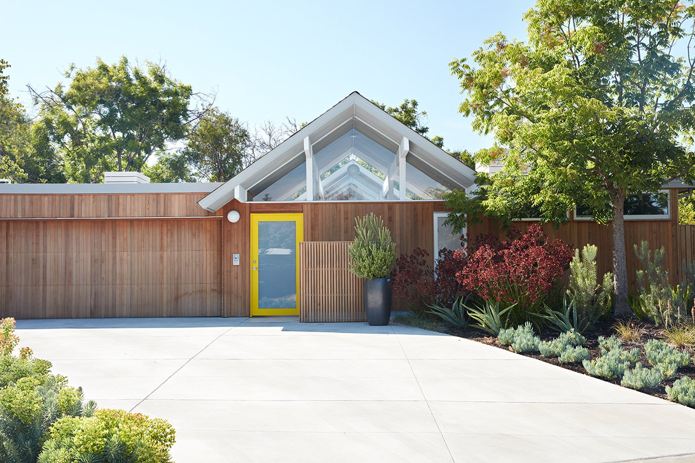 Outdoor, Front Yard, Trees, Shrubs, and Concrete Patio, Porch, Deck  Photo 1 of 10 in Same Bones, New Materials—A Double Gable Eichler Gets a Dashing Update