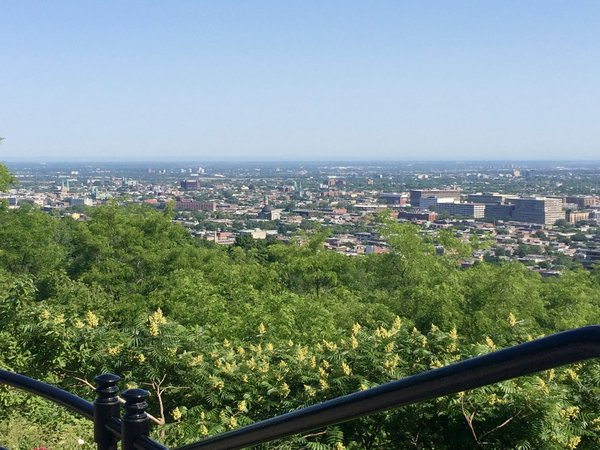 72 Hours in Montreal