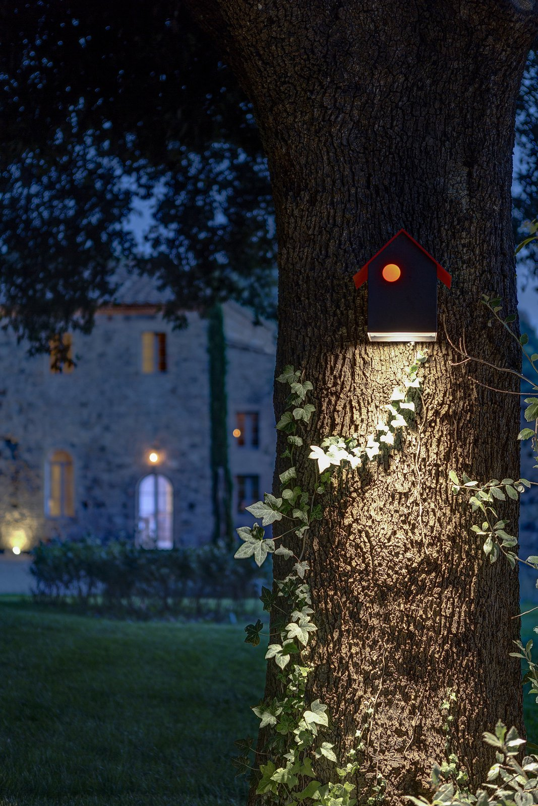 Photo 3 of 7 in A Nocturnal Marvel in Montalcino