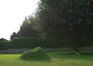 Terra! The Grass Armchair - Photo 5 of 5 -