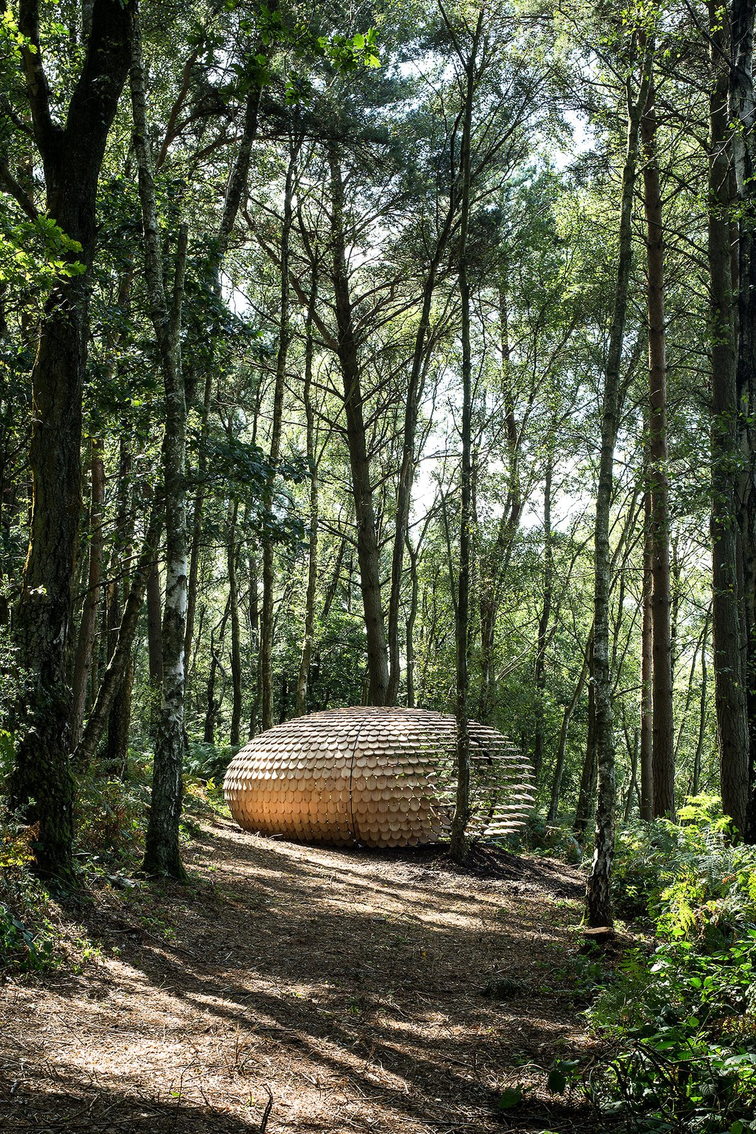 Photo 5 of 6 in An Organic Cedar Wood Pavilion Filled With Meaning