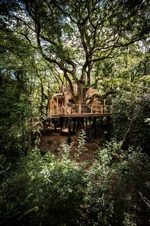 Woodman's Tree House is built using local materials where possible and includes traditional wooden craftsmanship throughout the interior. The structure stands on high stilts to minimize its effect on the land and all the existing trees are protected and maintained unharmed and untouched.