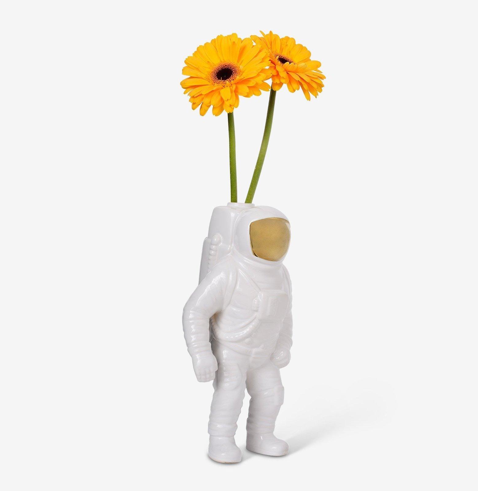 Photo 1 of 1 in Starman Vase