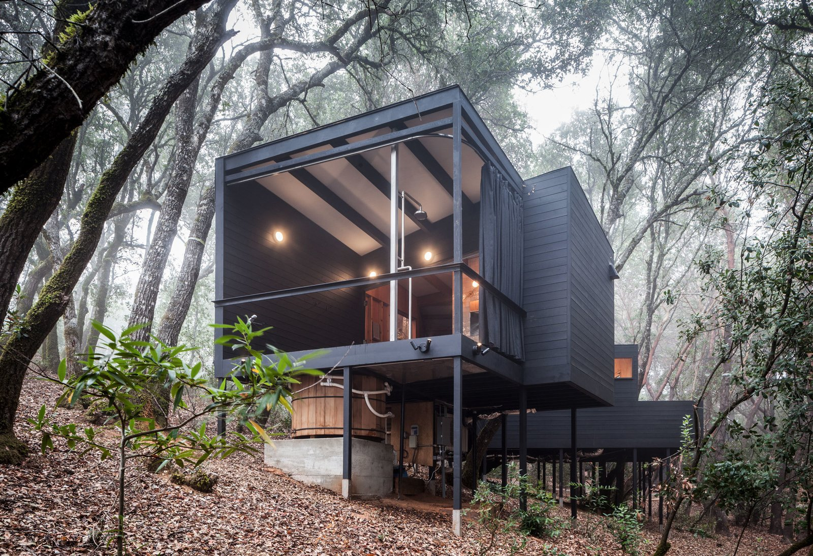 Best from Forest House By Envelope A + D