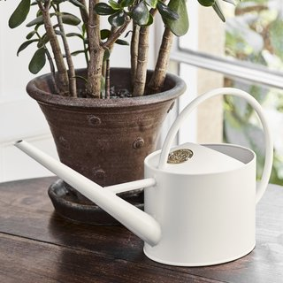 Sophie Conran Greenhouse & Indoor Watering Can