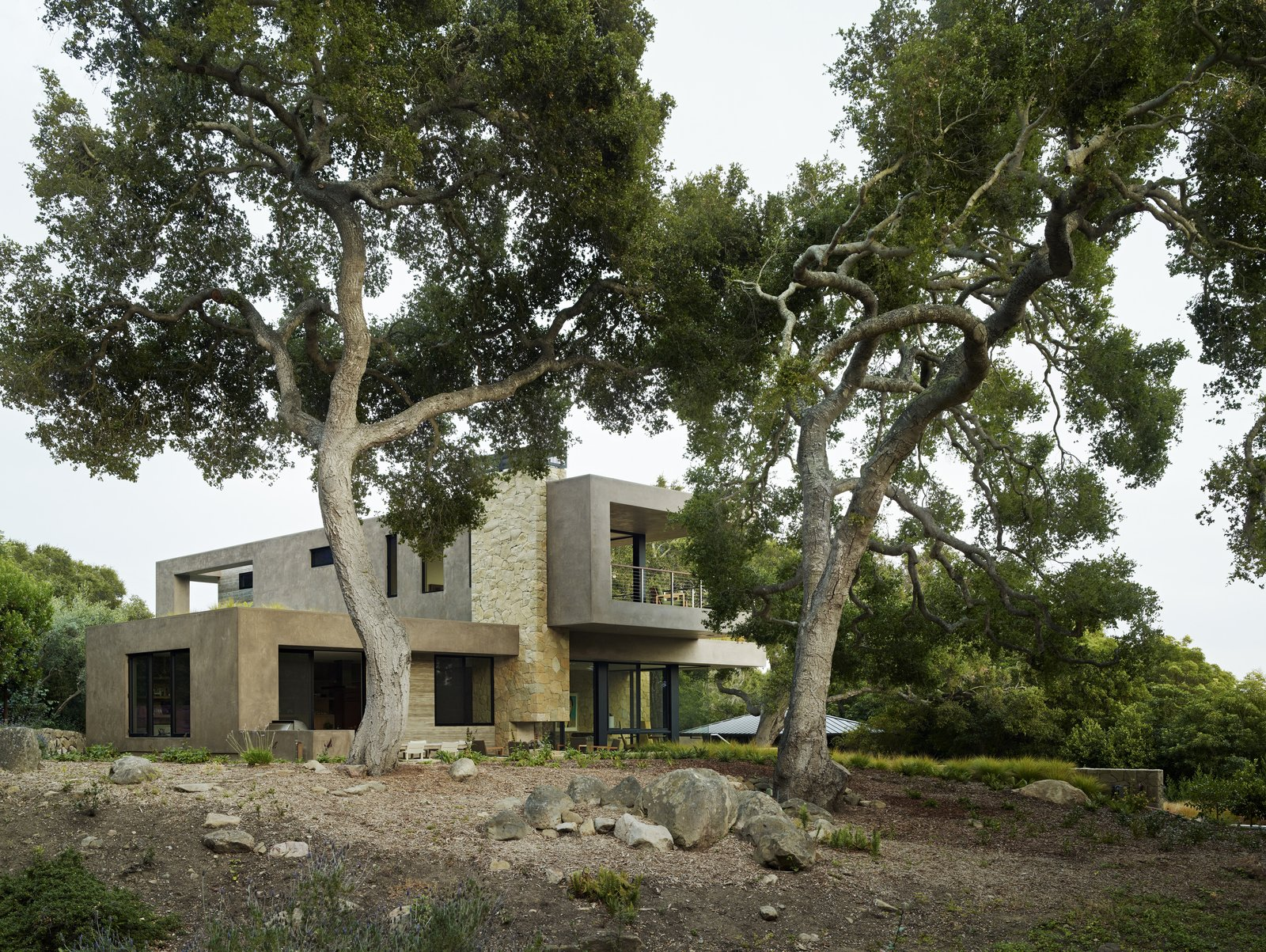 Outdoor, Back Yard, Woodland, and Trees  Lilac Drive by Marmol Radziner