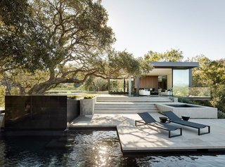 The oak trees, along with the topography of the site, inspired the design of the modern house.