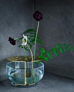 Modern Ikebana - Photo 5 of 8 -