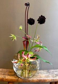 Modern Ikebana - Photo 1 of 8 -