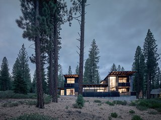 The structure is divided into two solid vertical volumes connected by glazed living areas. The cedar cladding and steel panels reflect the hues of the surrounding forest.