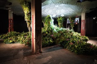 World's First Underground Park One Step Closer to Seeing the Light of Day